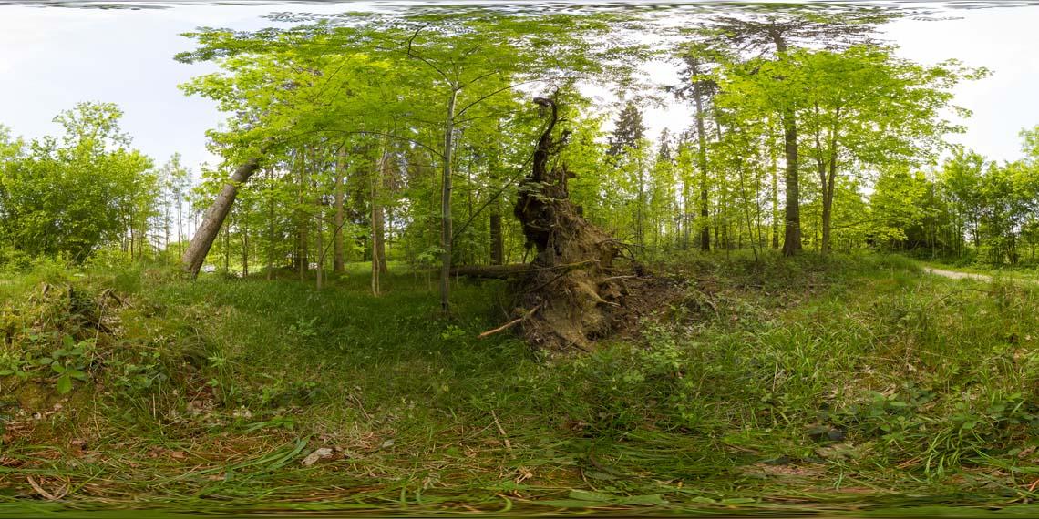 aufgenommen am 17.05.2015, Canon EOS 7D, ISO 400, 1/160, F/8, Sigma 8mm 1:3,5